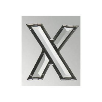 """Litera """"X"""""""